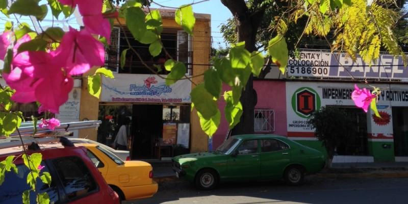 Le printemps au Mexique