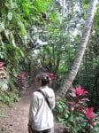 Bali: dans la jungle près d'Ubud